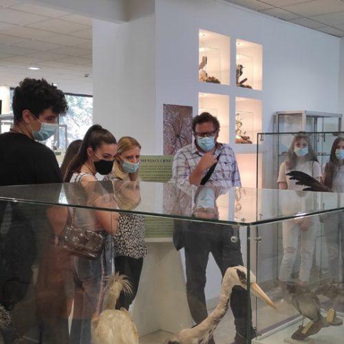 Učenici ponovo u posjeti Prirodnjačkom muzeju