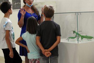 Pogledajte prilog Dječije redakcije TVCG o izložbi Muzeja